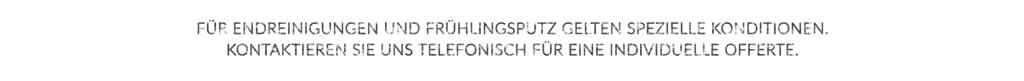 Buchungs Guide Endreinigung Frühlingsputz